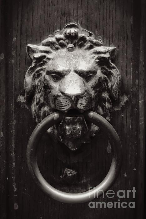 Lion Door Knocker Print by Carol Groenen