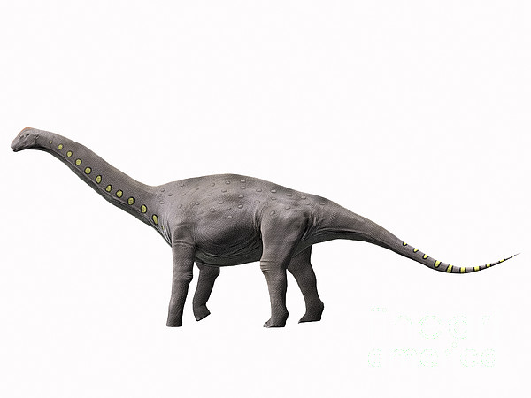 Lirainosaurus Astibae, Late Cretaceous Print by Nobumichi Tamura