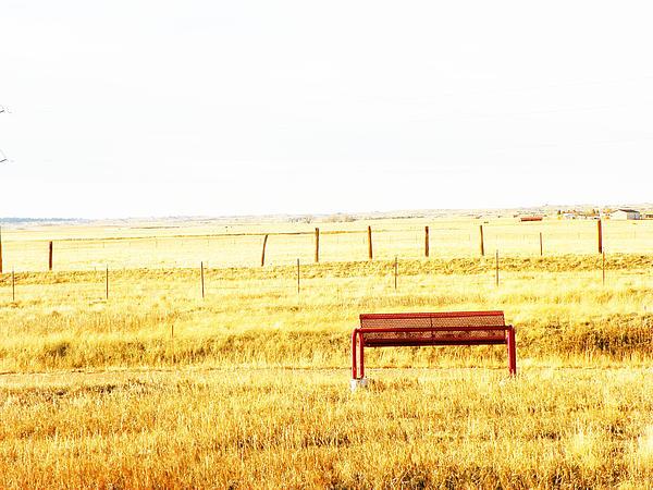 Little Bench On The Prairie Print by Lenore Senior