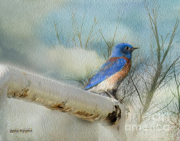 Little Blue Bird Print by Rhonda Strickland
