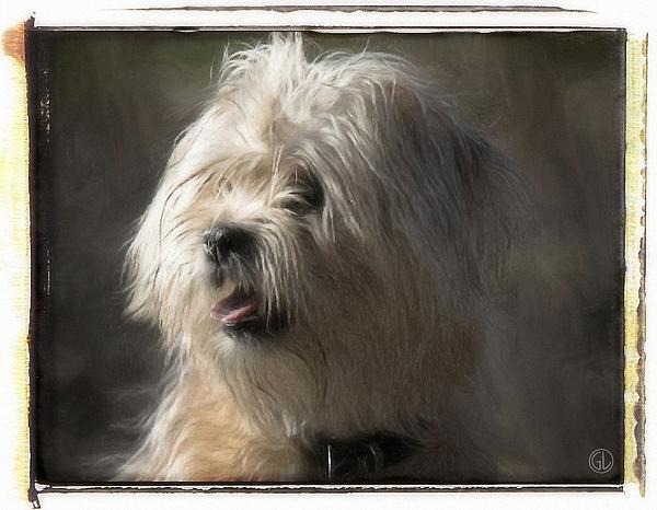 Little Doggie Print by Gun Legler
