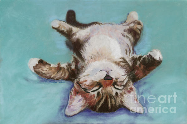 Little Napper  Print by Pat Saunders-White
