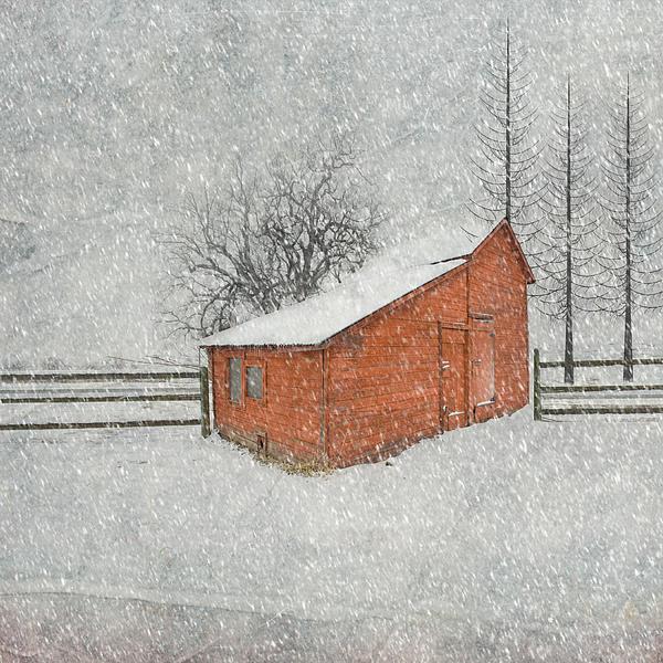 Little Red Barn Print by Juli Scalzi