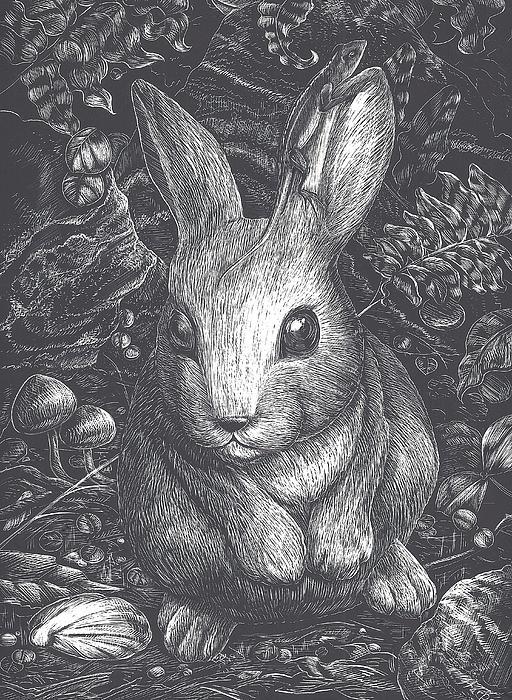 Lizard's Ledge Print by Jennifer Harper