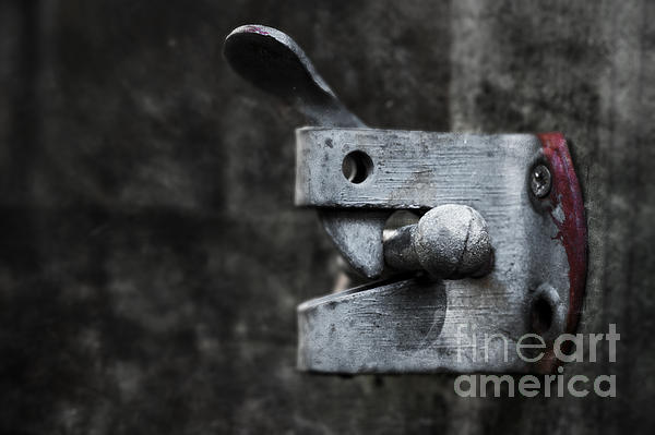 Lock Print by Svetlana Sewell