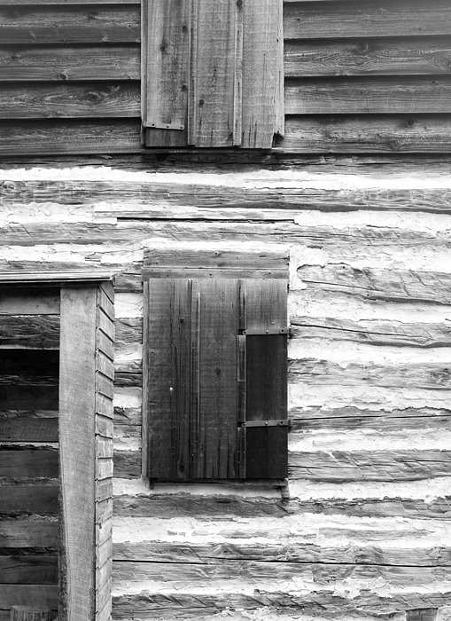 Log Cabin Walls 4 Bw Print by Mary Bedy