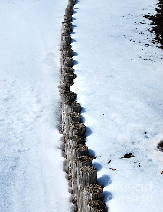 Log Fence In The Snow Print by Nancy Mueller
