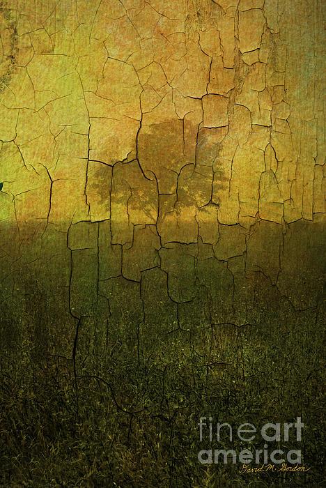 Lone Tree In Meadow -textured Print by David Gordon