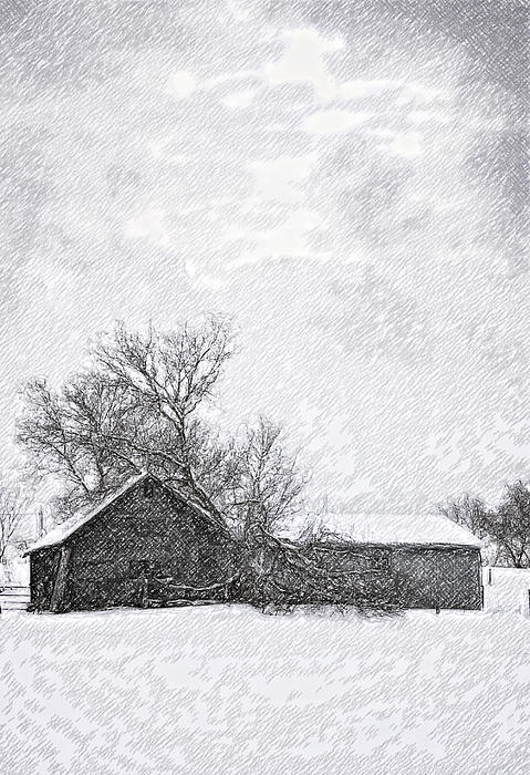 Loneliness Sketch Print by Steve Harrington