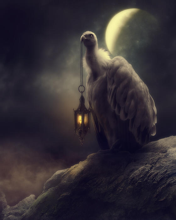 Lonely In The Moonlight Print by Cindy Grundsten