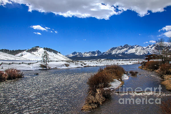Looking Up The Salmon River Print by Robert Bales