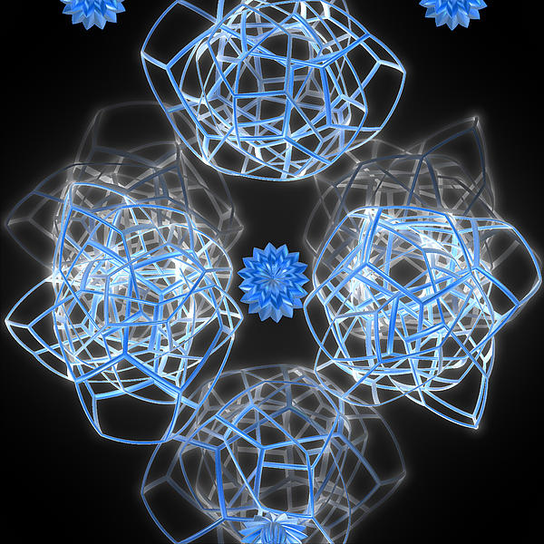 First Star Art  - Lotus Lattice