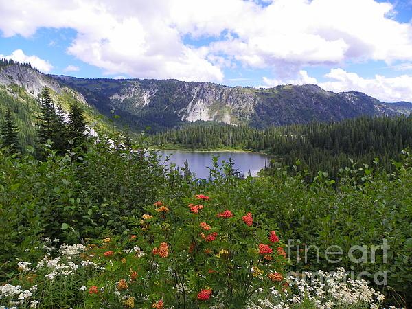 J J - Louise Lake - Mount Rainier National Park