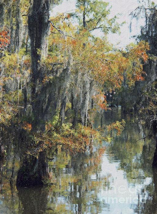 Louisiana Bayou Foliage In Early October Print by Andrew Govan Dantzler