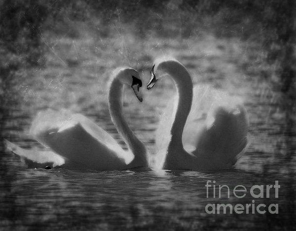 Love Is.. Print by Nina Stavlund