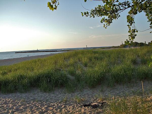 Susan Wyman - Low Sun on the Dunes
