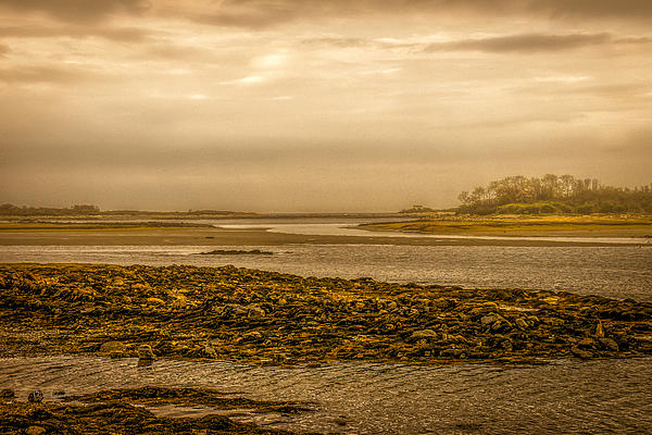 Low Tide Cape Porpoise Maine Print by Bob Orsillo