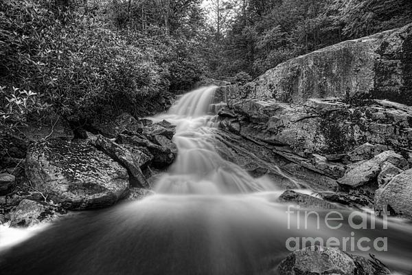 Lower Falls On Big Run River  Print by Dan Friend