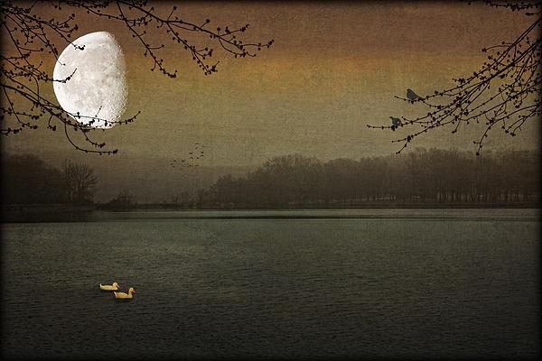 Lunar Lake Print by Tom York Images