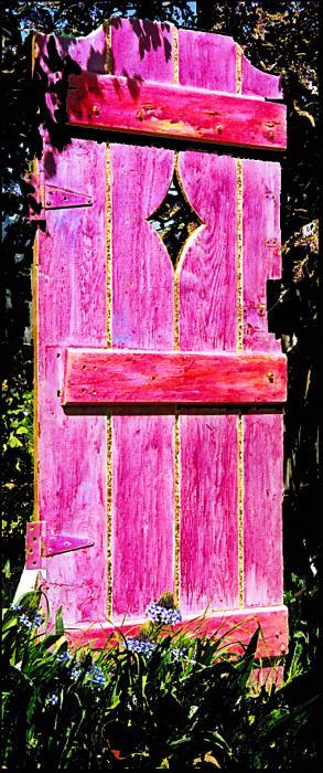 Magenta Painted Door In Garden Print by Asha Carolyn Young and Daniel Furon