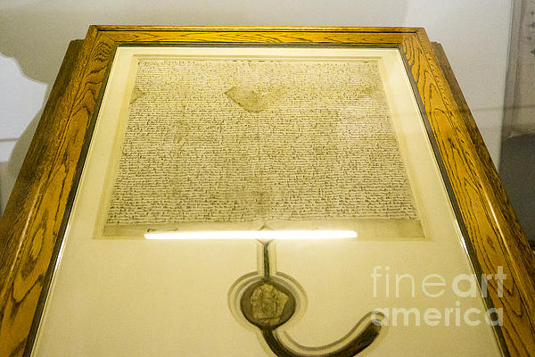 Magna Carta Print by Steven Ralser