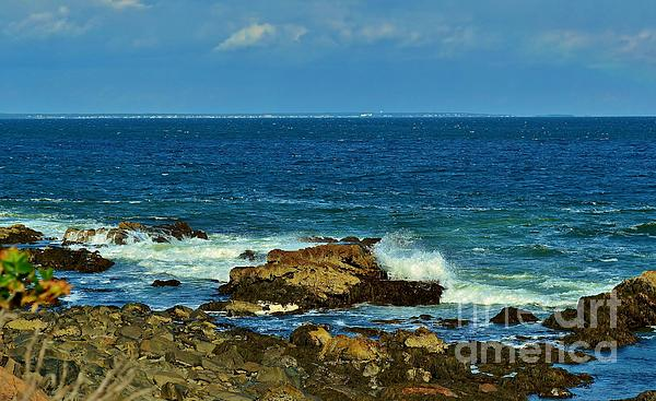 Anne Clark - Maine Seascape Marginal Way Ogunquit