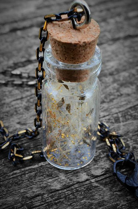 Make A Wish - Dandelion Seed In Glass Bottle With Gold Fairy Dust Necklace Print by Marianna Mills