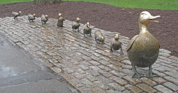 Make Way For Ducklings Print by Barbara McDevitt