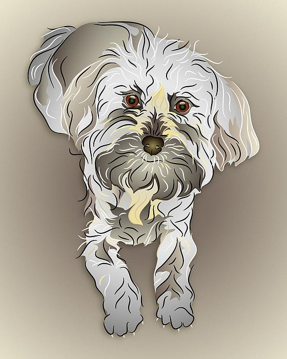 Maltipoo Print by MM Anderson