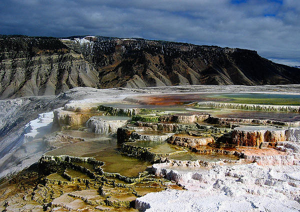 Mammoth Hot Springs Print by Robert Woodward