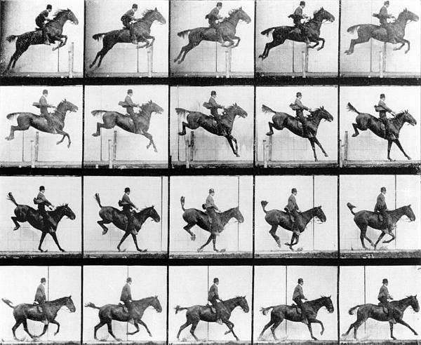 Man And Horse Jumping Print by Eadweard Muybridge