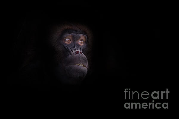 Man In The Mask Print by Ashley Vincent
