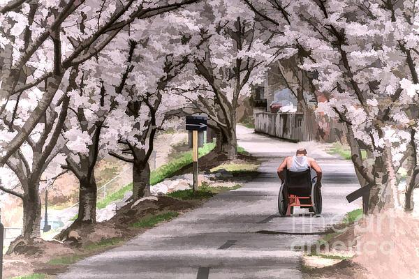 Man In Wheelchair Under Cherry Blossoms Print by Dan Friend