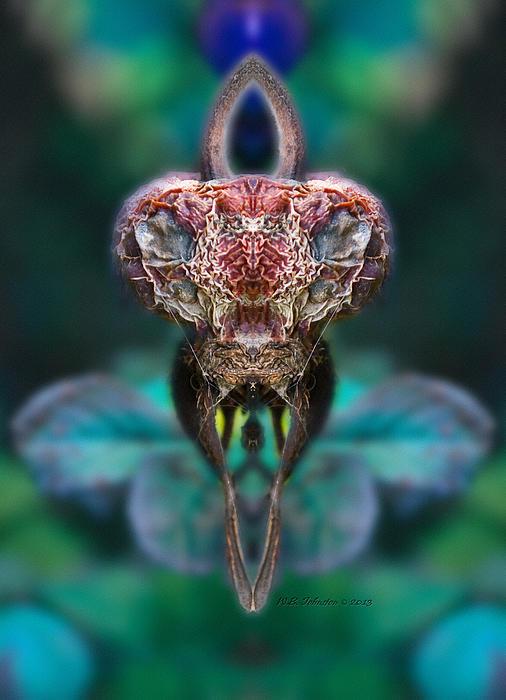 Mantis Print by WB Johnston