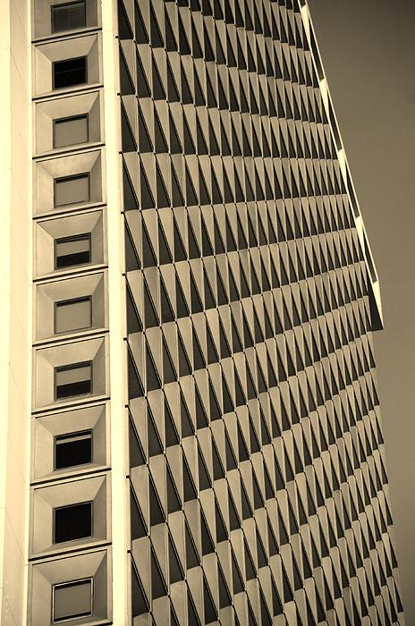 Many Windows In Sepia Print by Rob Hans