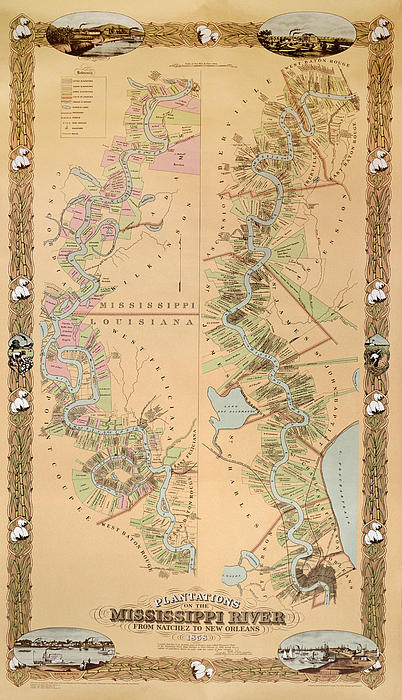 Map Depicting Plantations On The Mississippi River From Natchez To New Orleans Print by American School