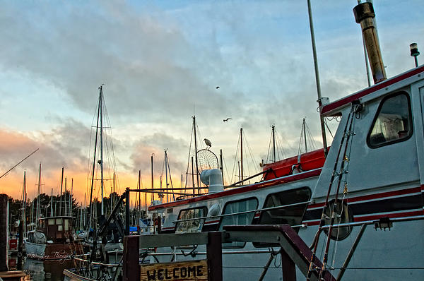 Marina Sunrise Print by Jim Thompson