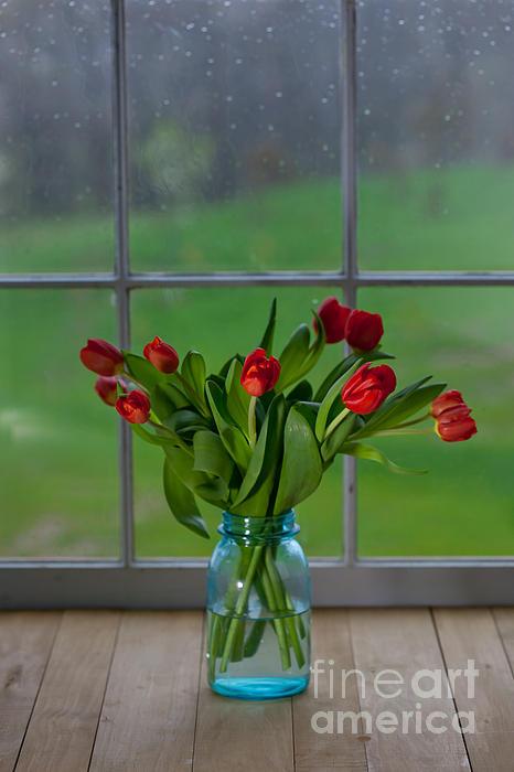 Mason Jar With Tulips Print by Kay Pickens
