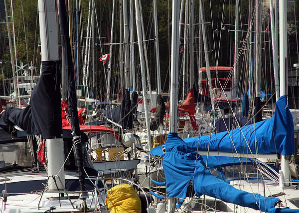 Masts Print by Jim Nelson