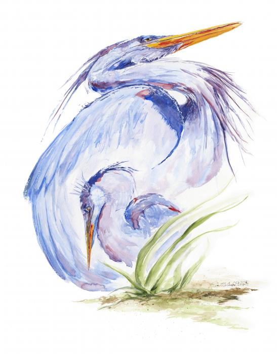 Maternal Heron Print by Eve McCauley