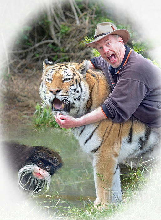 Jim Fitzpatrick - Me My Tiger and my Emperor Tamarin