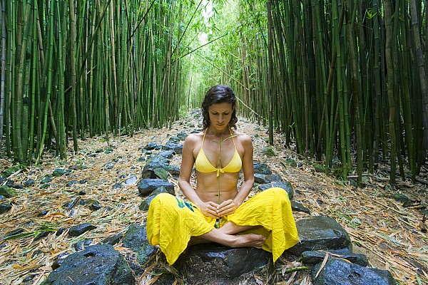 Meditation In Bamboo Forest Print by M Swiet Productions