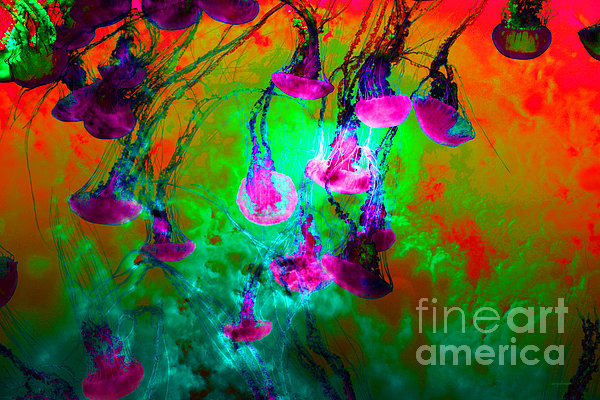 Medusas On Fire 5d24939 P128 Print by Wingsdomain Art and Photography