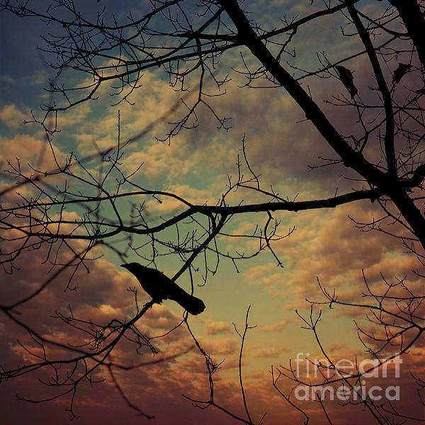 Melancoly Crow Print by Dirk Wuestenhagen