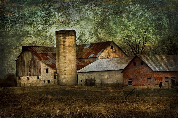 Mennonite Farm In Tennessee Usa Print by Kathy Clark