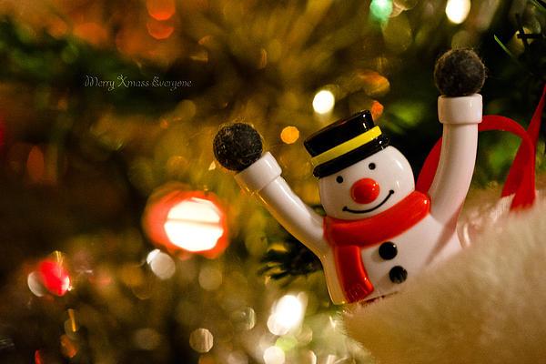 Merry Christmas Everyone  Print by Steven Poulton