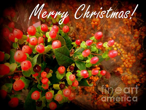 Merry Christmas - Red Berries Print by Miriam Danar