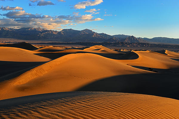 Mesquite Sand Dunes Death Valley Print by Peter Dang