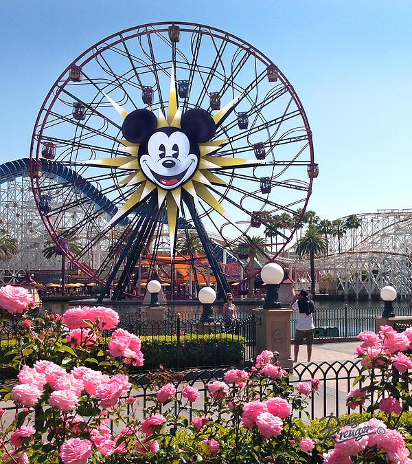 Doug Kreuger - Mickey
