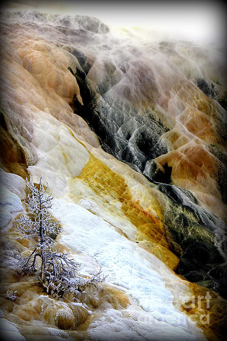 Minerals And Stream Print by C Ray  Roth
